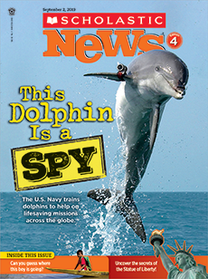 This Dolphin is a Spy Scholastic News 4 magazine.